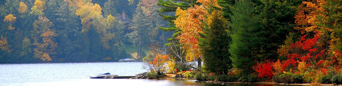 Lakes Fishing Discover Algonquin Park