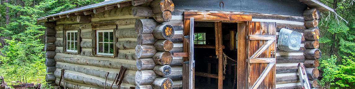 Campsites Cabins Park Info Discover Algonquin Park